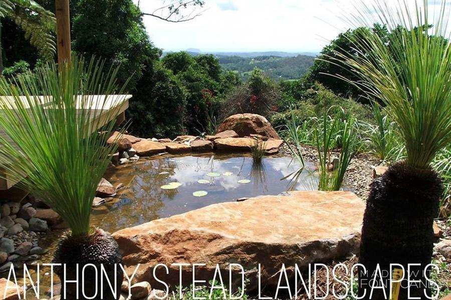 Natural pond setting with elevated viewing deck.